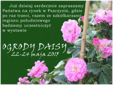 b_230_00_16777215_00_images_aktualnosci_hajdrowscy-daisy-pszczyna.jpg