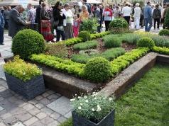 Wystawa 'Ogrody Daisy' w Pszczynie 2013